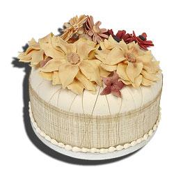 CAKE-BD2