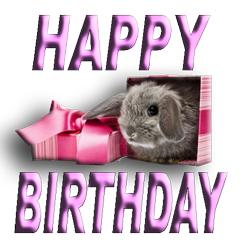 birthday-bunny